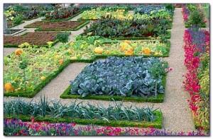 Сад удачи - ландшафтный дизайн. Пла